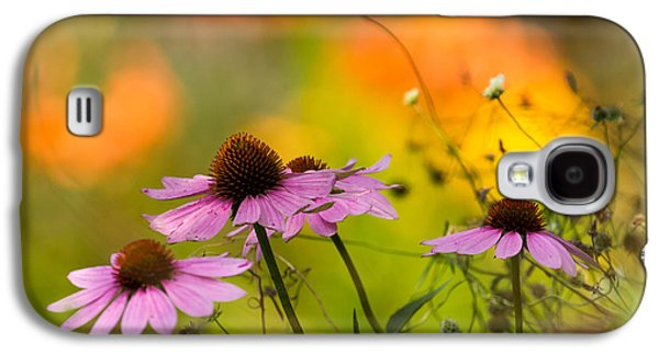 Galaxy S4 Cases - Coneflower Symphony Galaxy S4 Case by Mary Amerman