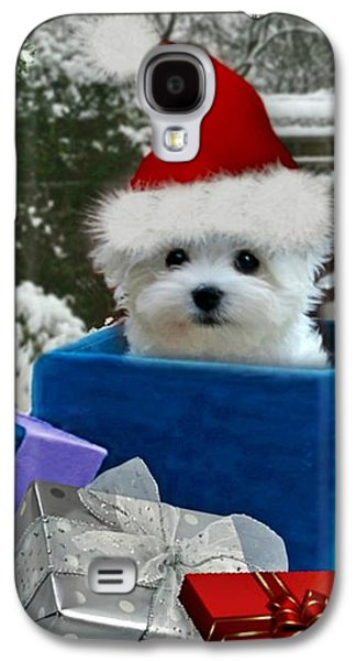 Puppies Galaxy S4 Cases - All I Want for Christma Galaxy S4 Case by Morag Bates