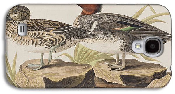 Americans Drawings Galaxy S4 Cases - American Green-winged Teal Galaxy S4 Case by John James Audubon