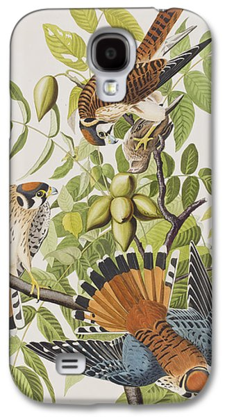 American Sparrow Hawk Galaxy S4 Case by John James Audubon