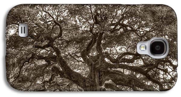 Live Oaks Galaxy S4 Cases - Angel Oak Live Oak Tree Galaxy S4 Case by Dustin K Ryan