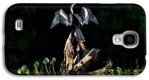 Anhinga Anhinga Anhinga, Pantanal Galaxy S4 Case by Panoramic Images