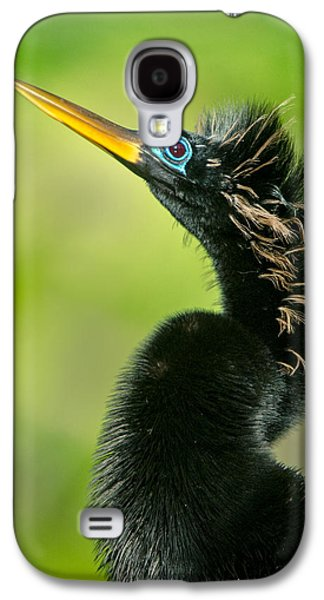 Anhinga Anhinga Anhinga, Tortuguero Galaxy S4 Case by Panoramic Images