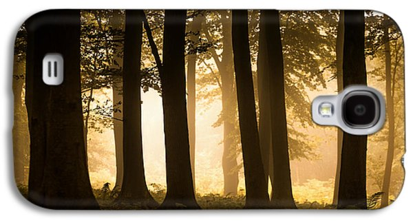 Landscapes Photographs Galaxy S4 Cases - Autumn Woodland Galaxy S4 Case by Ian Hufton