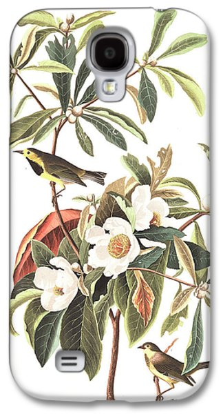 Feather Drawings Galaxy S4 Cases - Bachmans Warbler  Galaxy S4 Case by John James Audubon