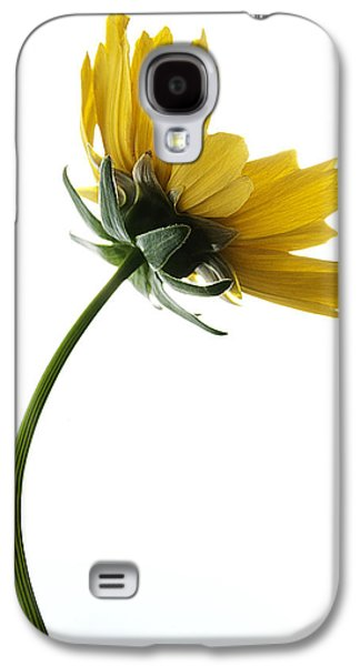 Nature Abstracts Galaxy S4 Cases - Bend Not Break Galaxy S4 Case by Thomas Shanahan