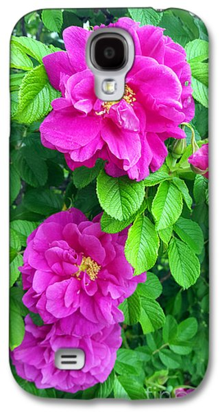 Original Art Photographs Galaxy S4 Cases - Blooming Galaxy S4 Case by Alys Caviness-Gober