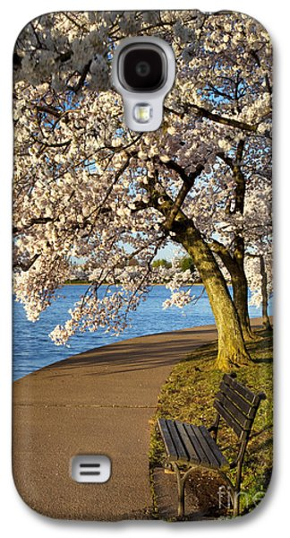 Cherry Blossoms Galaxy S4 Cases - Blossoming Cherry Trees Galaxy S4 Case by Brian Jannsen