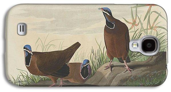 Blue-headed Pigeon Galaxy S4 Case by John James Audubon