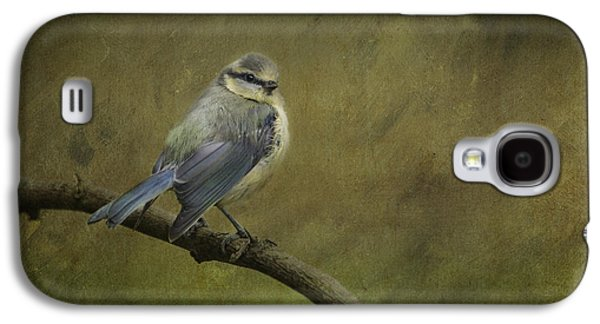 Blue Tit Galaxy S4 Case by Liz Leyden