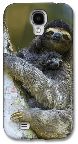 Animals and Earth - Galaxy S4 Cases - Brown-throated Three-toed Sloth Galaxy S4 Case by Suzi Eszterhas