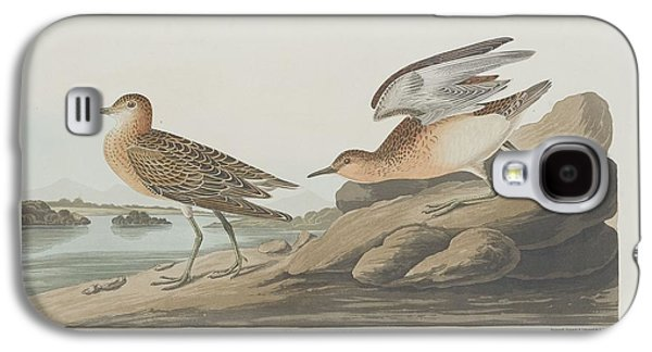 Buff-breasted Sandpiper Galaxy S4 Case by John James Audubon