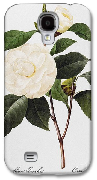 Biology Photographs Galaxy S4 Cases - Camellia, 1833 Galaxy S4 Case by Granger