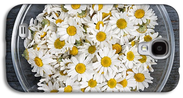 Botanical Galaxy S4 Cases - Chamomile flowers in bowl Galaxy S4 Case by Elena Elisseeva
