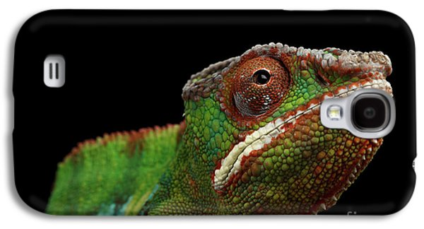 Closeup Head Of Panther Chameleon, Reptile In Profile View Isolated On Black Background Galaxy S4 Case by Sergey Taran