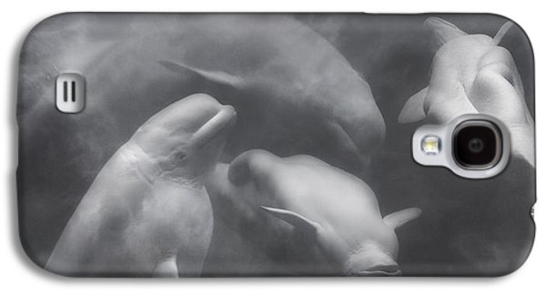 Dancing Belugas  Galaxy S4 Case by Betsy Knapp