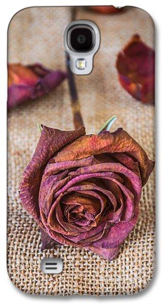 Dead Rose Galaxy S4 Case by Carlos Caetano