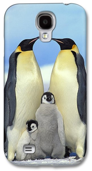 Baby Bird Galaxy S4 Cases - Emperor Penguin Aptenodytes Forsteri Galaxy S4 Case by Konrad Wothe