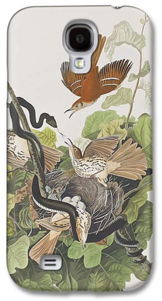 Reptiles Drawings Galaxy S4 Cases - Ferruginous Thrush Galaxy S4 Case by John James Audubon