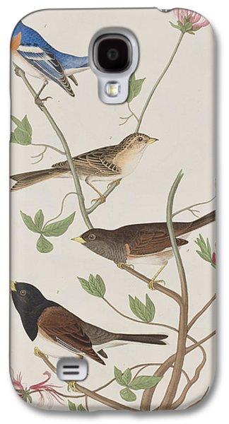 Snow Tree Prints Galaxy S4 Cases - Finches Galaxy S4 Case by John James Audubon