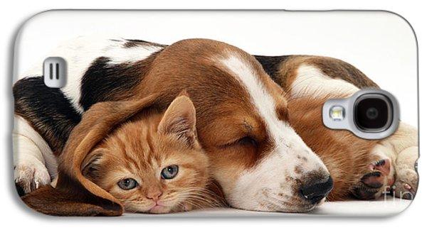 Ginger Kitten And Basset Puppy Galaxy S4 Case by Jane Burton