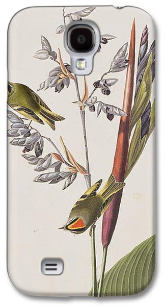 Golden-crested Wren Galaxy S4 Case by John James Audubon