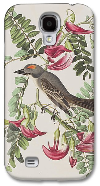 Animals Drawings Galaxy S4 Cases - Gray Tyrant Galaxy S4 Case by John James Audubon