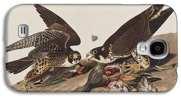 Blood Drawings Galaxy S4 Cases - Great-footed Hawk Galaxy S4 Case by John James Audubon