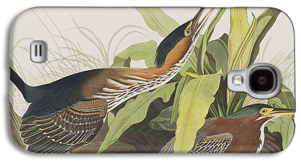 Animals Drawings Galaxy S4 Cases - Green Heron Galaxy S4 Case by John James Audubon