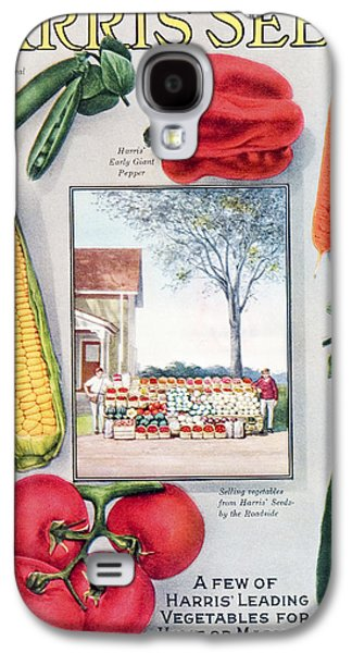 Farmstand Galaxy S4 Cases - Historic Harris Seeds Catalog Galaxy S4 Case by Remsberg Inc