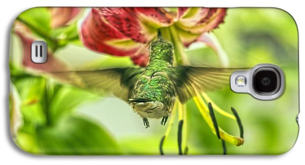 Florescent Lighting Galaxy S4 Cases - Hummingbird And Pendant Flower Galaxy S4 Case by Geraldine Scull