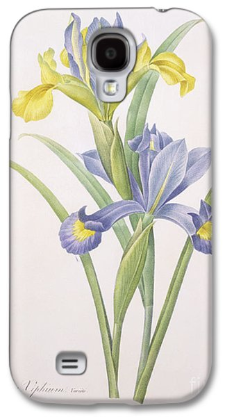 Nature Study Drawings Galaxy S4 Cases - Iris xiphium Galaxy S4 Case by Pierre Joseph Redoute