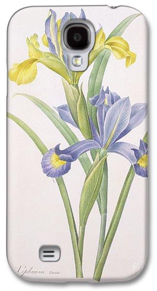Iris Xiphium Galaxy S4 Case by Pierre Joseph Redoute