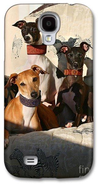 Italian Greyhounds Galaxy S4 Case by Angela Rath