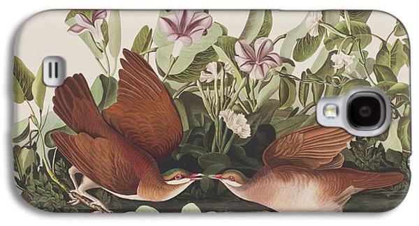 Key West Dove Galaxy S4 Case by John James Audubon