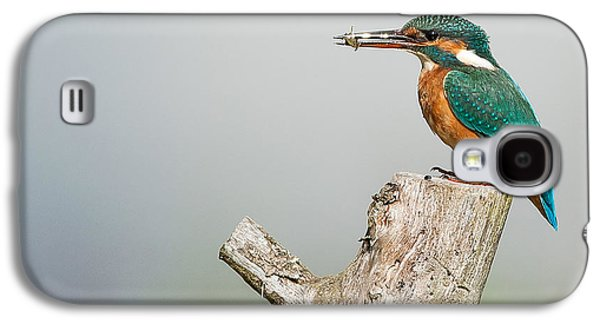 Kingfisher Galaxy S4 Case by Paul Neville