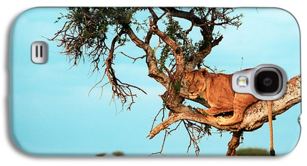 Game Photographs Galaxy S4 Cases - Lioness in Africa Galaxy S4 Case by Sebastian Musial