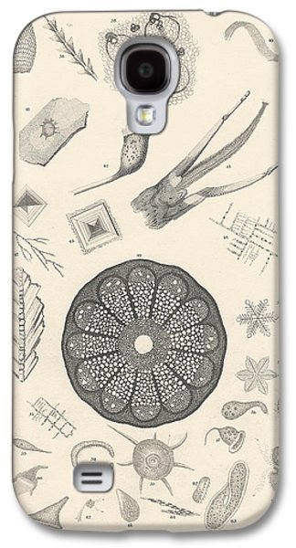 Botanical Galaxy S4 Cases - Microscopic Objects Galaxy S4 Case by Captn Brown