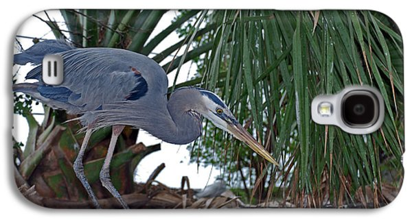Photos Of Birds Galaxy S4 Cases - Old Blue Galaxy S4 Case by Skip Willits