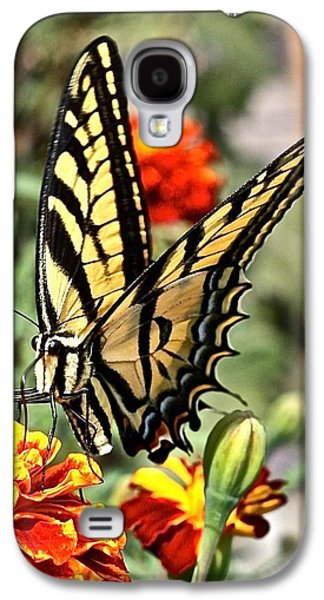 Oregon Swallowtail Butterfly  Galaxy S4 Case by Brent Sisson