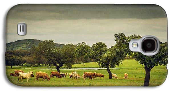 Portugal Galaxy S4 Cases - Pasturing Cows Galaxy S4 Case by Carlos Caetano