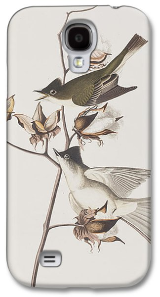 Pewit Flycatcher Galaxy S4 Case by John James Audubon