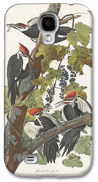 Feather Drawings Galaxy S4 Cases - Pileated Woodpecker Galaxy S4 Case by John James Audubon