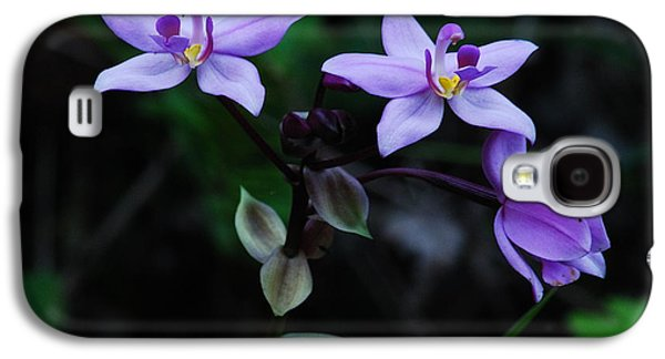 Terrestrial Galaxy S4 Cases - Purple Orchids 2 Galaxy S4 Case by Michael Peychich