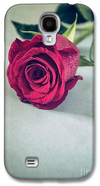 Melancholy Galaxy S4 Cases - Red Rose Galaxy S4 Case by Carlos Caetano