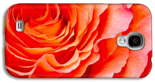 Roses Galaxy S4 Cases - Rose Galaxy S4 Case by Angela Doelling AD DESIGN Photo and PhotoArt