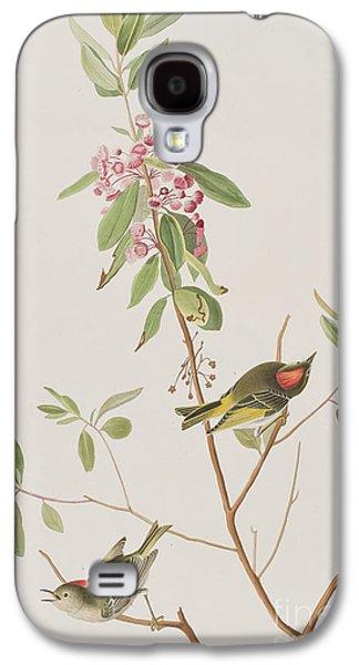 Ruby Crowned Wren Galaxy S4 Case by John James Audubon