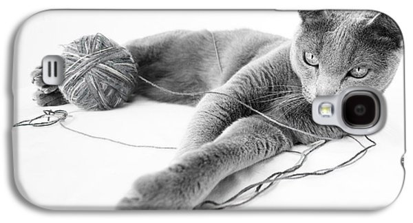 Grey Photographs Galaxy S4 Cases - Russian Blue Galaxy S4 Case by Nailia Schwarz