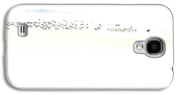 High Key Shorebirds Galaxy S4 Case by Angela Rath