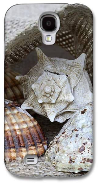 Seashells Galaxy S4 Case by Frank Tschakert